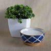 Burnish Blue Soy Wax Candle In a Medium Bowl
